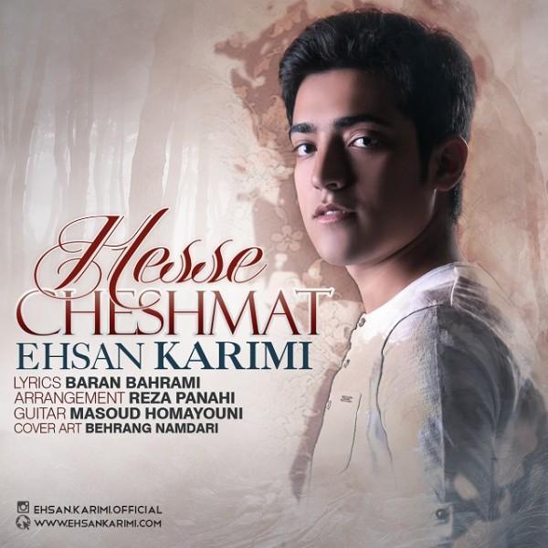 Ehsan Karimi - Hesse Cheshmat