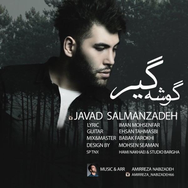 Javad Salmanzadeh - Gooshe Gir