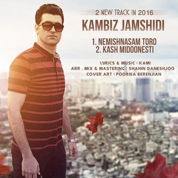 Kambiz Jamshidi - Kash