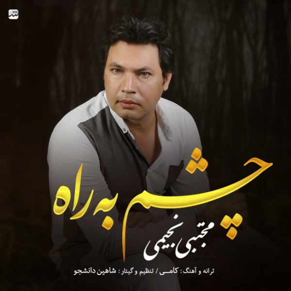 Mojtaba Najimi - Cheshm Be Rah