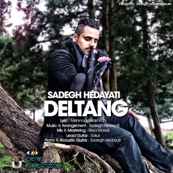 Sadegh Hedayati - Deltang