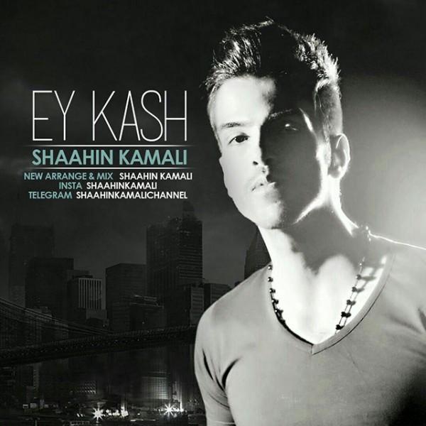 Shaahin Kamali - Ey Kash