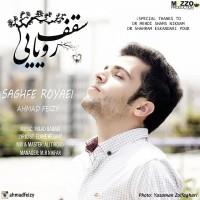 Ahmad-Feizy-Saghfe-Royaei