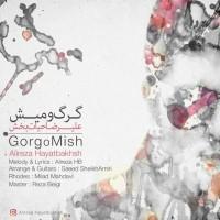 Alireza-Hayatbakhsh-Gorgo-Mish