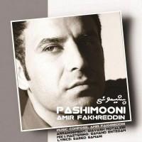 Amir-Fakhreddin-Pashimooni