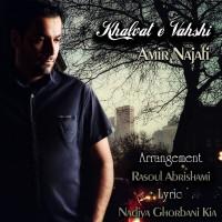 Amir-Najafi-Khalvate-Vahshi