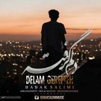 Babak-Salimi-Delam-Gerefteh