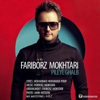 Fariborz-Mokhtari-Pileye-Ghalb