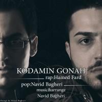 Hamed-Fard-Kodamin-Gonah-Ft-Navid-Bagheri