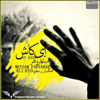 Meysam-Farvahar-Ey-Kash