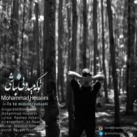 Mohammad-Hosseini-To-Ke-Midooni-Nabashi