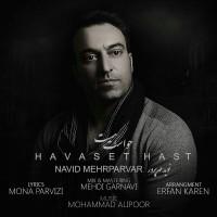 Navid-Mehrparvar-Havaset-Hast