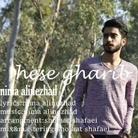Nima-Alinejad-Hesse-Gharib