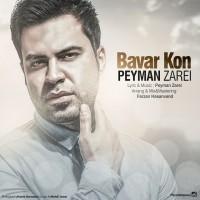 Peyman-Zarei-Bavar-Kon
