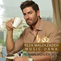 Reza-MalekZadeh-Rira