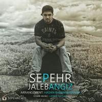 Sepehr-Jaleb-Angiz