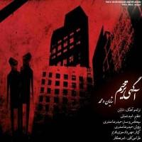 Shayan-Mohammad-Agahi-Tarhim