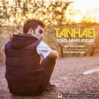 Soheil-Mehrzadegan-Tanhaei
