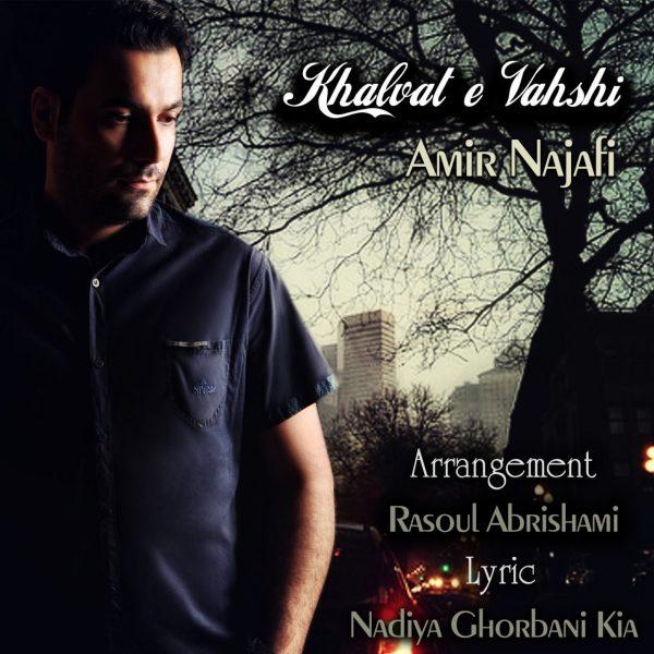 Amir Najafi - Khalvate Vahshi