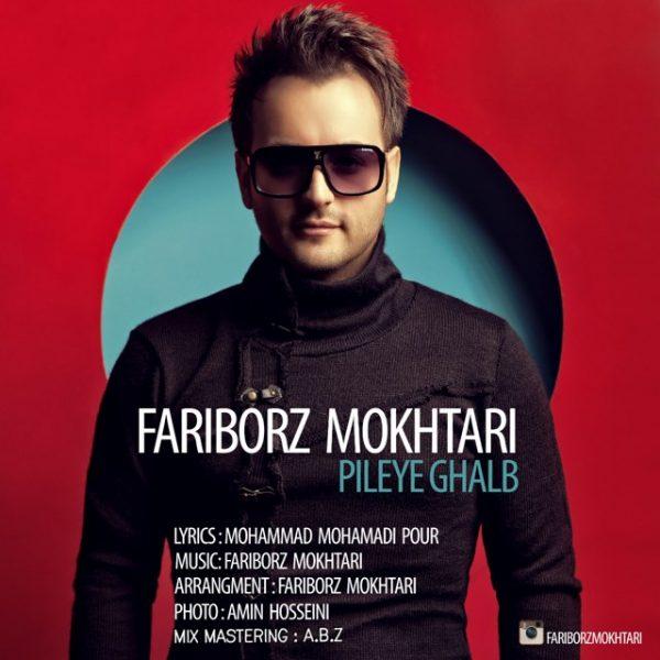 Fariborz Mokhtari - Pileye Ghalb