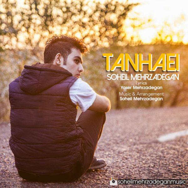 Soheil Mehrzadegan - Tanhaei