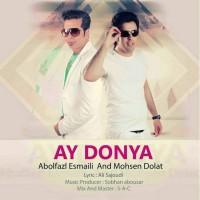 Abolfazl-Esmaili-Mohsen-Dolat-Ay-Donya