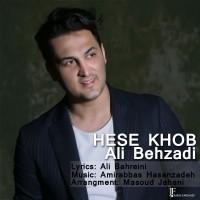 Ali-Behzadi-Hese-Khob