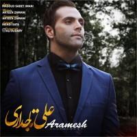 Ali-Tajdary-Aramesh