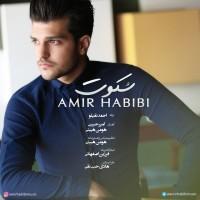 Amir-Habibi-Sokoot