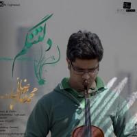 Mohammad-Taghazaei-Deltangam
