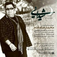 Mohammadreza-Moghaddam-Sheydaei