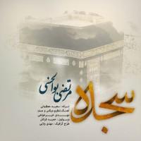 Morteza-Bolhasani-Sojdeh