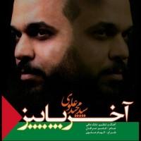 Seyed-Majid-Alavi-Akhare-Paeez