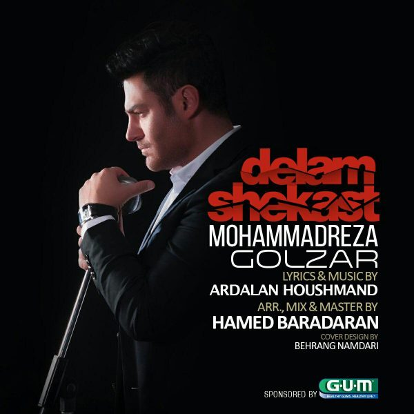 Mohammadreza Golzar - Delam Shekast