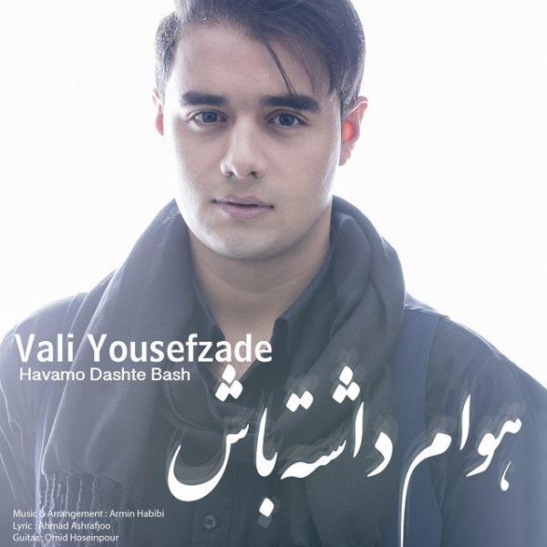 Vali Yousefzade - Havamo Dashte Bash
