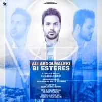 Ali-Abdolmaleki-Bi-Esteres