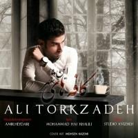 Ali-Torkzadeh-Coffehaye-In-Shahr