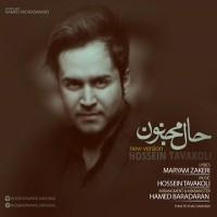 Hossein-Tavakoli-Haale-Majnon-New-Version