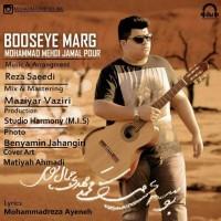Mohammad-Mehdi-Jamal-Pour-Booseye-Marg