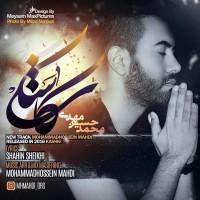 MohammadHossein-Mahdi-Kashki