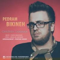Pedram-Bikineh-Ghatreh-Shabnam