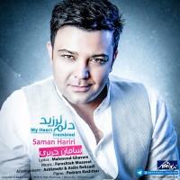 Saman-Hariri-Delam-Larzid