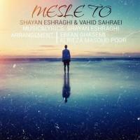 Shayan-Eshraghi-Vahid-Sahraei-Mesle-To