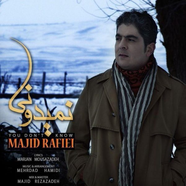 Majid Rafiei - Nemidooni