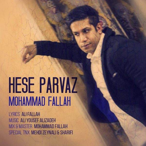 Mohammad Fallah - Hese Parvaz