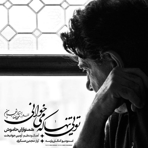 Mojtaba Asgari - Toei Tanha Ke Mikhani
