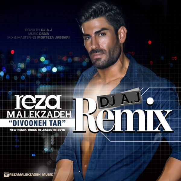 Reza Malekzadeh - Divoonetar (Remix)