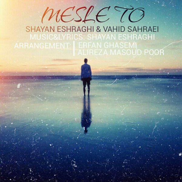 Shayan Eshraghi & Vahid Sahraei - Mesle To