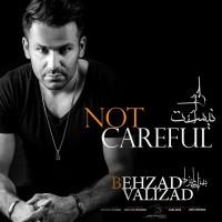 Behzad-Valizad-Havaset-Nist