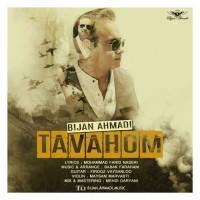 Bijan-Ahmadi-Tavahom